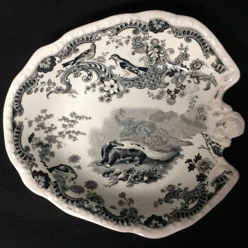 Rare ZOOLOGICAL SKETCHES Staffordshire Pickle Dish 1820