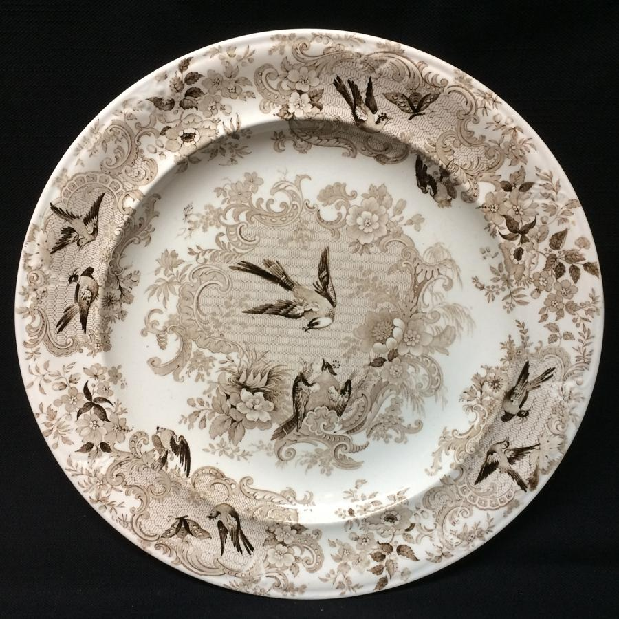 Ornithological Transfer Printed Wedgwood Plate c1870