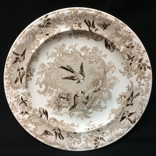 Ornithological Transfer Printed Wedgwood Plate c1870