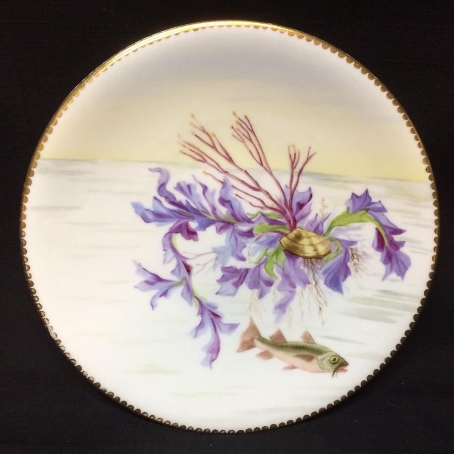 Superb Derby Staffordshire Fish Aquatic Porcelain Plate ~ 1870