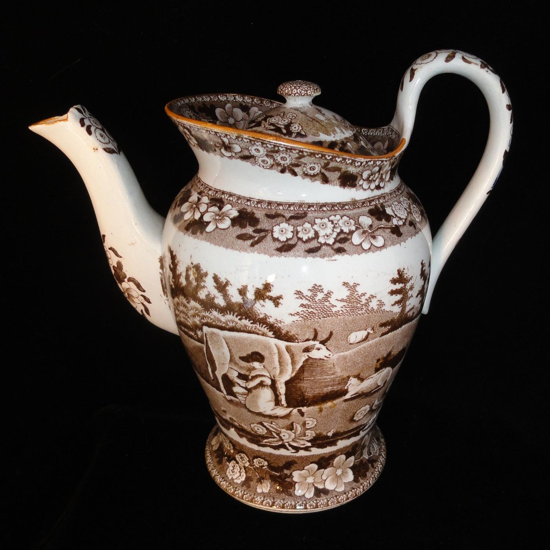 MILKMAID Staffordshire Brown Bachelor Coffee Pot ~ Davenport COWS c184