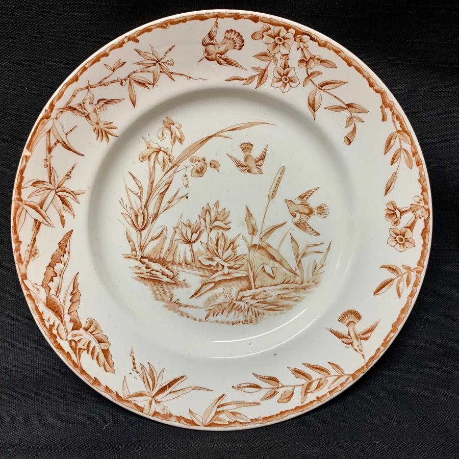 INDUS Brown Transferware Plate ~ Exotic Birds 1885
