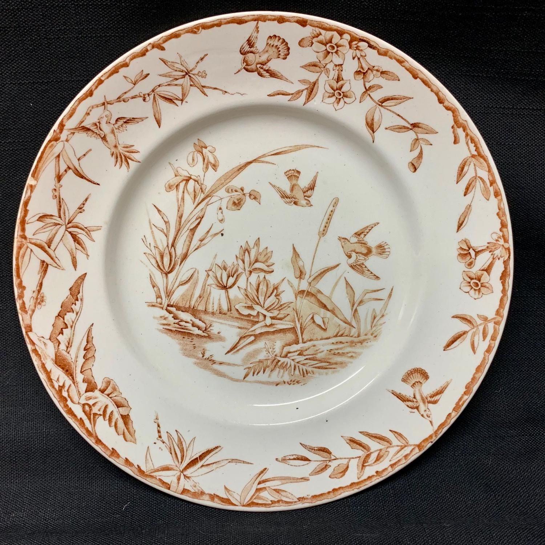 INDUS Brown Transferware Plate ~ Exotic Birds 1885