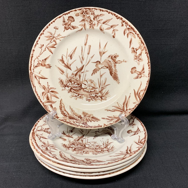 FOUR INDUS Exotic Birds Transferware Plates ~ 1885
