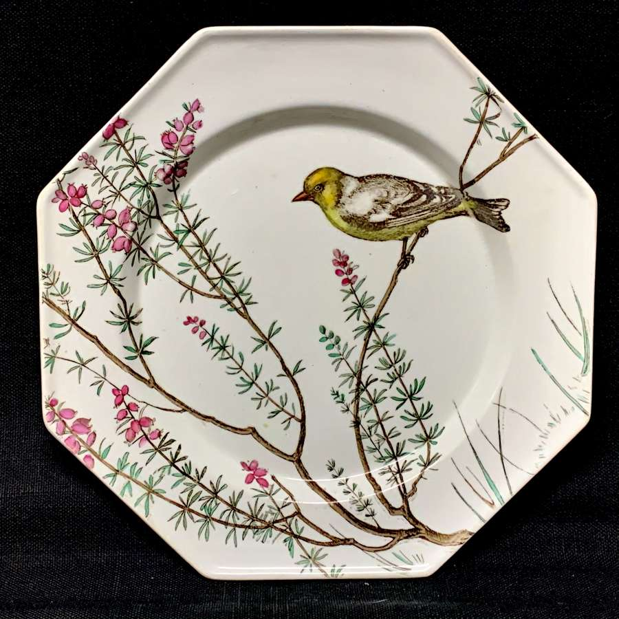 Rare Minton Ornithological Hand Painted Plate ~ ESSEX BIRDS 1862