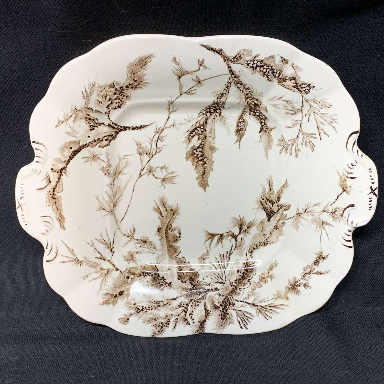 1883 Brown Transferware Biscuit Cake Plate ~ SEAWEED 1883