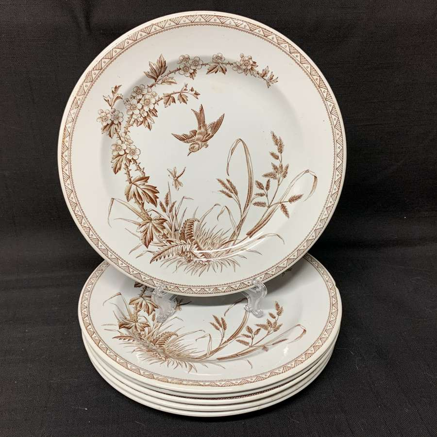 Six Brown Transferware Hawthorn Plates ~ Dragonfly 1877