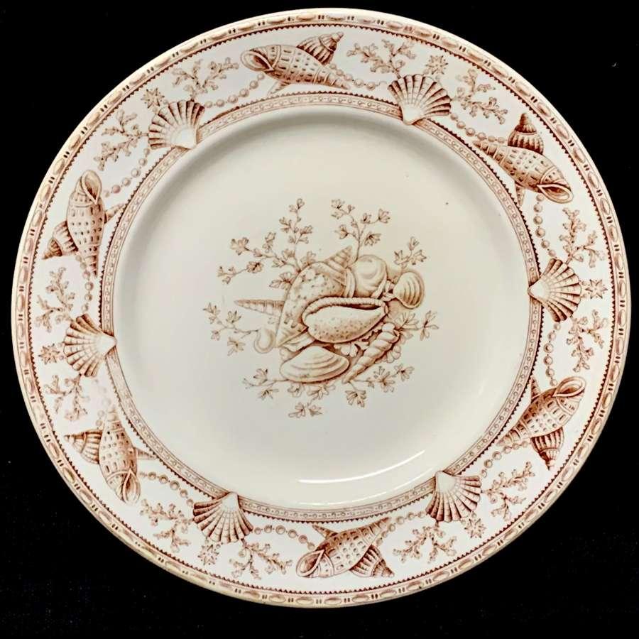 English Nantasket Brown Transferware Plate ~ Seaweed Seashells 1876