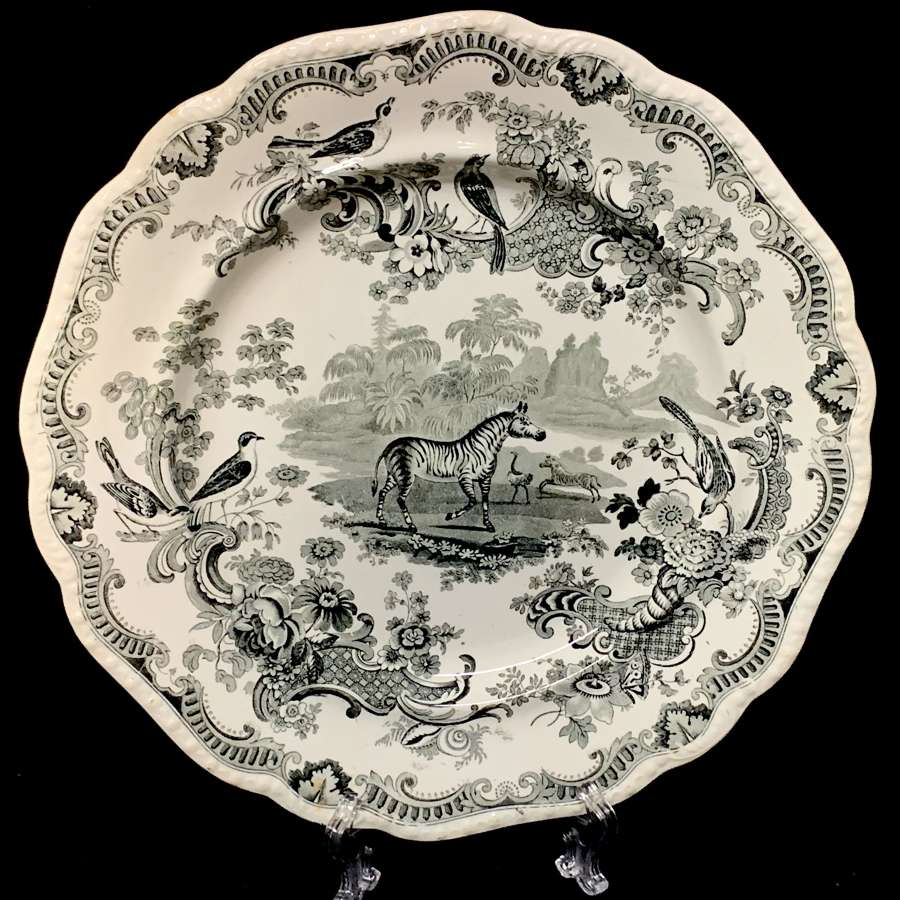 ZOOLOGICAL SKETCHES Staffordshire Plate ~ ZEBRA 1820