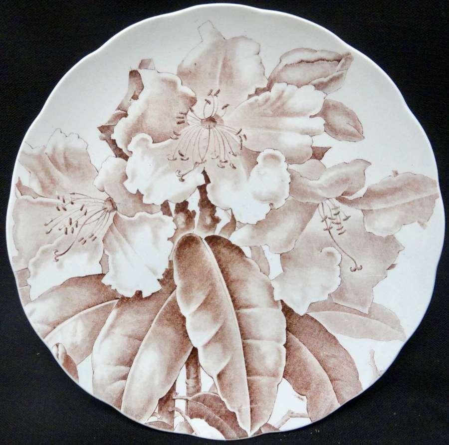 AESTHETIC BROWN TRANSFERWARE PLATE ~ MAGNOLIA 1885