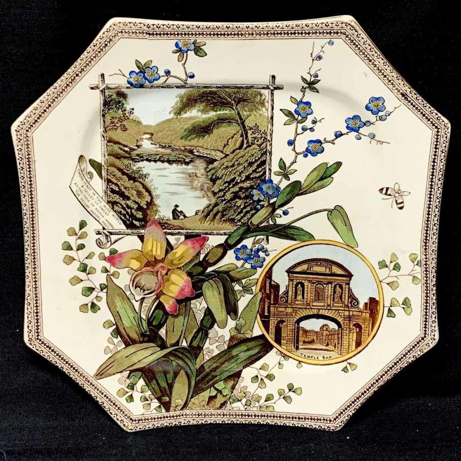 RARE Aesthetic Plate ~ DUBLIN IRELAND ~ 1884